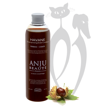 Anju Beaute Shampoo Havane, 250 ml - shampoo that enhances the vividness of all tan, brown, chocolate coats