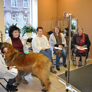 Leonberger Grooming Seminar with Anna Malsub (Russia) - 17.03.2017