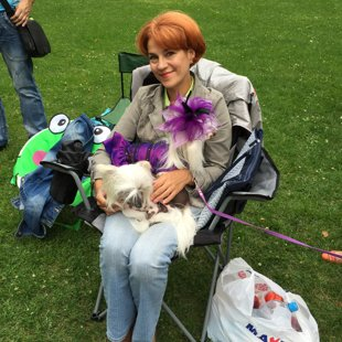 Party of Chinese Crested Dogs - 05.08.2015