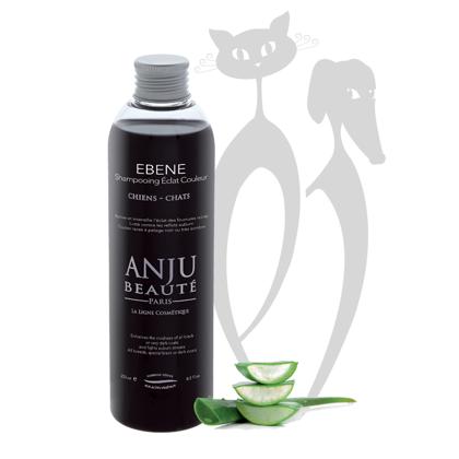 Anju Beaute Shampoo Ebène, 250 ml - для всех тёмных и чёрных тонов