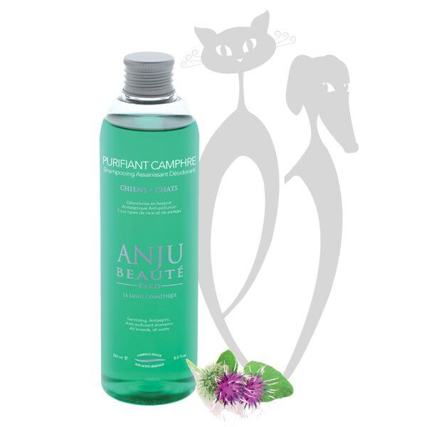 Anju Beaute Shampoo Purifiant Camphre, 250 ml - šampūns no piesārņojumiem