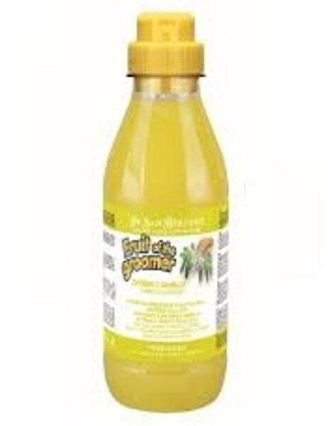 Iv San Bernard Ginger & Elderberry Shampoo, 1000 ml - nodrošina antibakteriālo iedarbību un samazina ādas niezi, novērš blaugznu rašanos