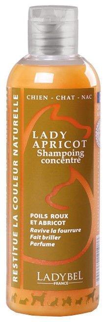 Ladybel Lady Apricot Shampoo, 200 ml - krāsu pastiprinošs šampūns dzīvniekiem ar aprikožu, zelta vai blondu spalvas nokrāsu