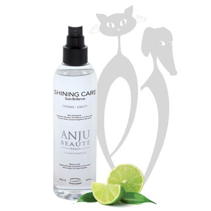 Anju Beaute Shining Lotion Spray, 150 ml - piešķir mīkstumu un spīdumu visiem spalvas tipiem, nepadarot spalvu smagu