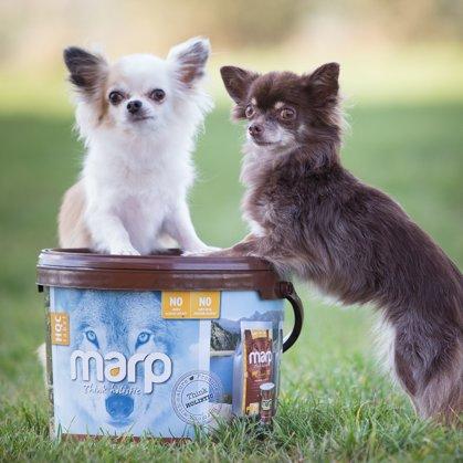 Сухой корм для собак МАРП