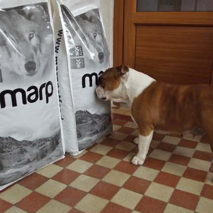 Marp Holistic корм для собак