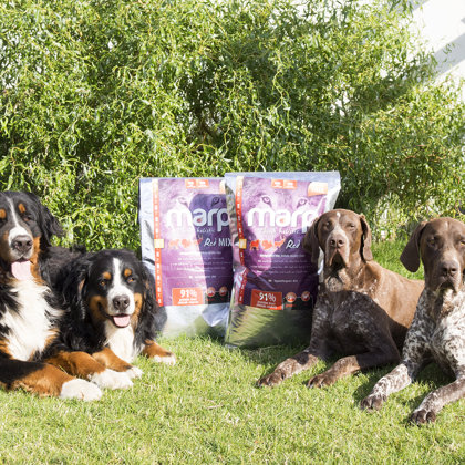 Marp Think Holistic Red Mix - food for dogs