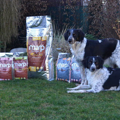 Marp Holistic Food for Dogs