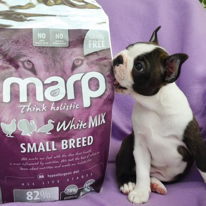 Marp Think Holistic White Mix Small Breed