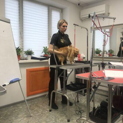 Mūsu komandas apmācības Krievijā pie Romana Fomina